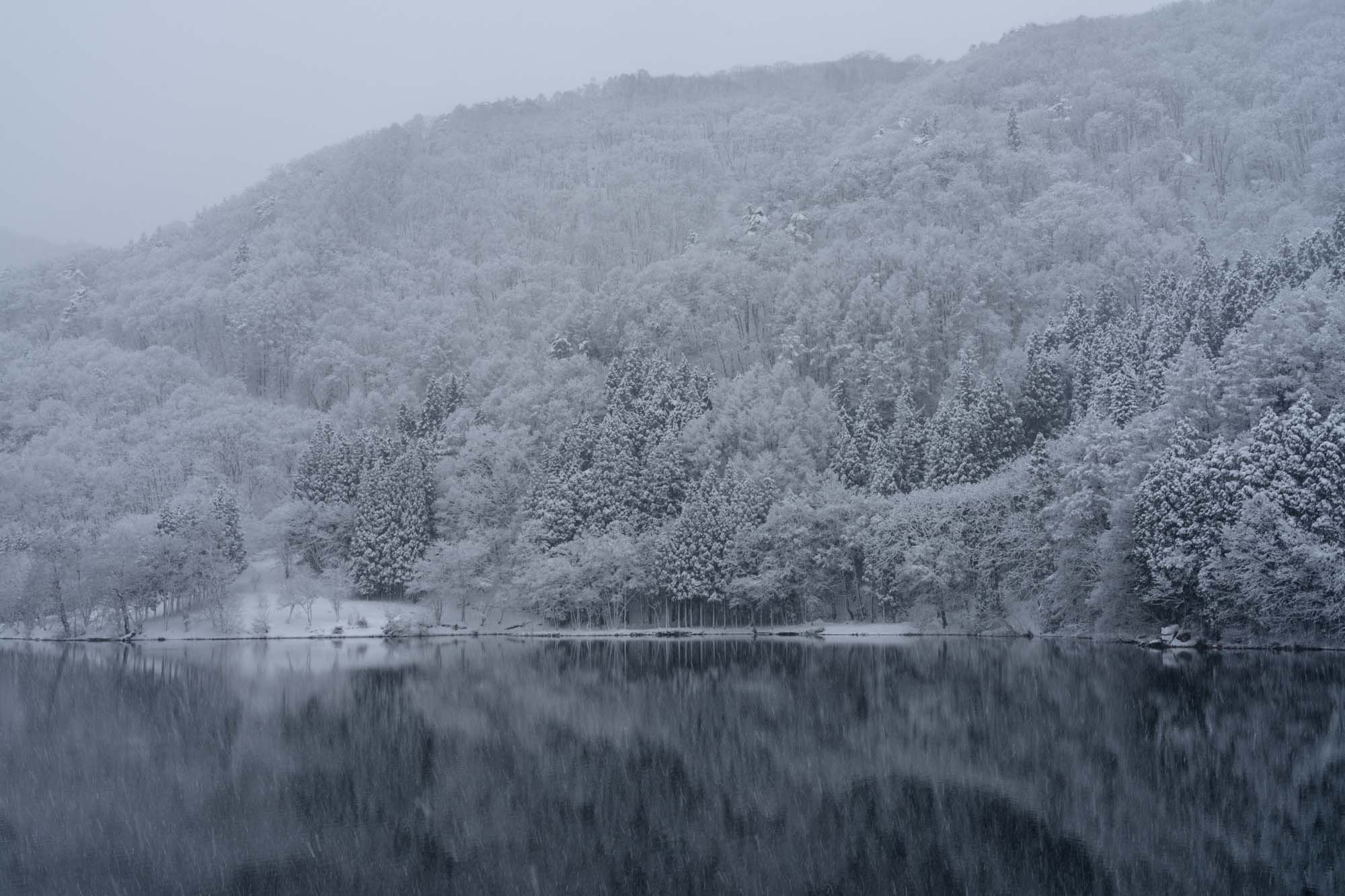 美しい樹氷と中綱湖